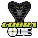 PS3 Modificate con Cobra ODE