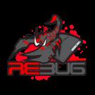 Modifica PS3 con installazione CFW 4.81 Rebug per Online e downgrade